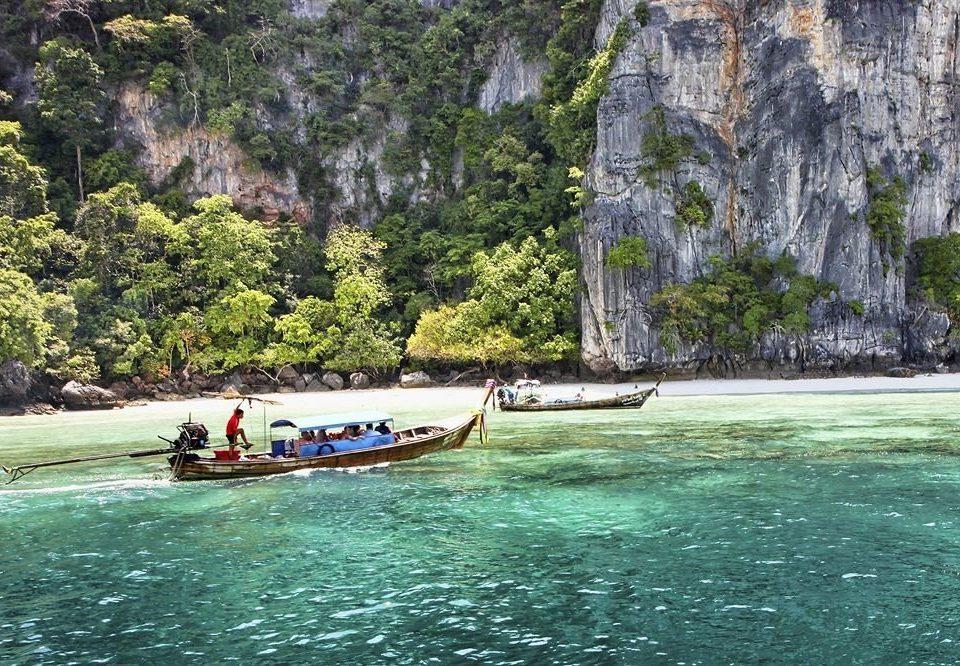 tree water Boat vehicle boating River Lake watercraft rowing rapid Sea canoe surrounded traveling Raft