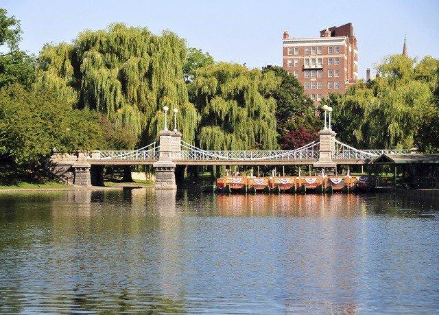 tree water sky River Boat bridge Lake reservoir waterway traveling