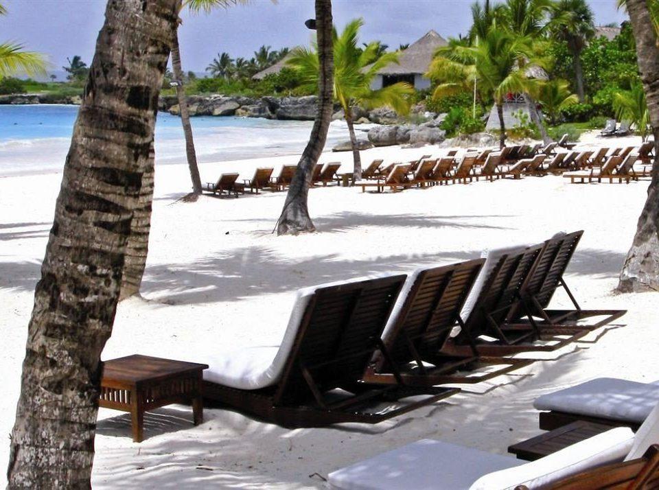 tree sky property ecosystem Resort vehicle Villa swimming pool shore Boat shade sandy