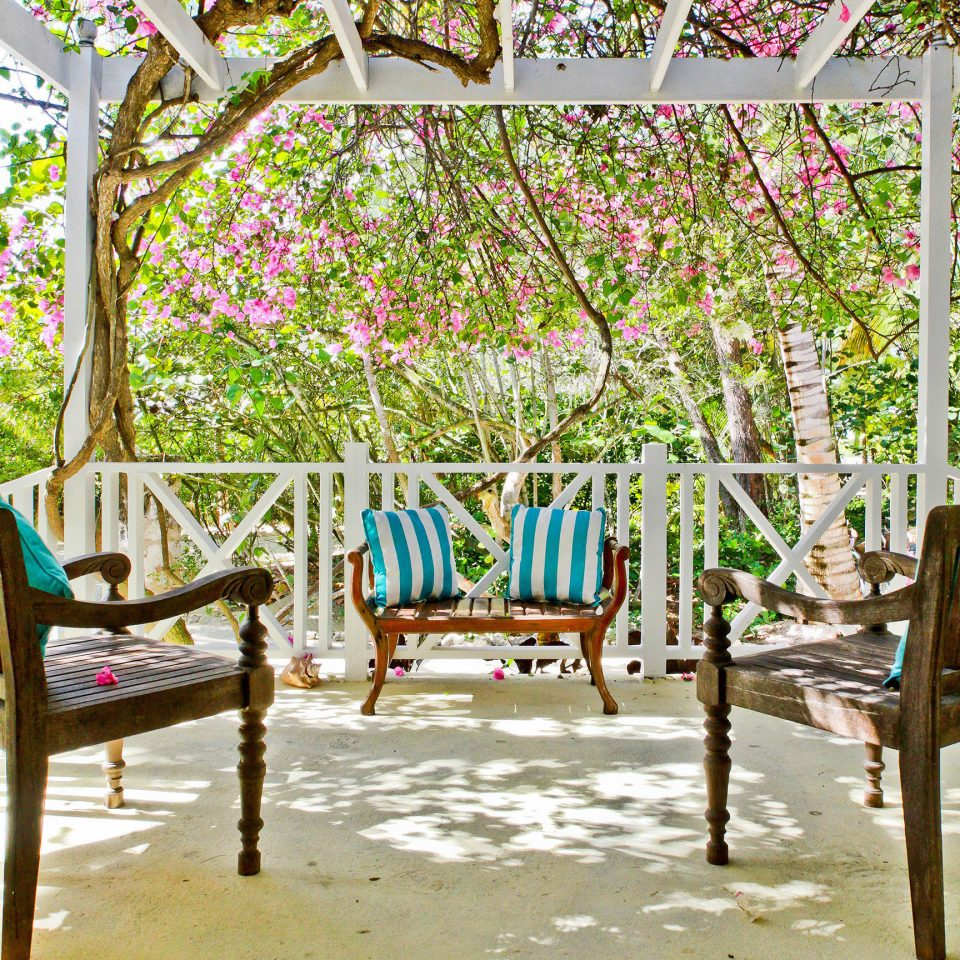 tree chair leisure botany seat flower porch