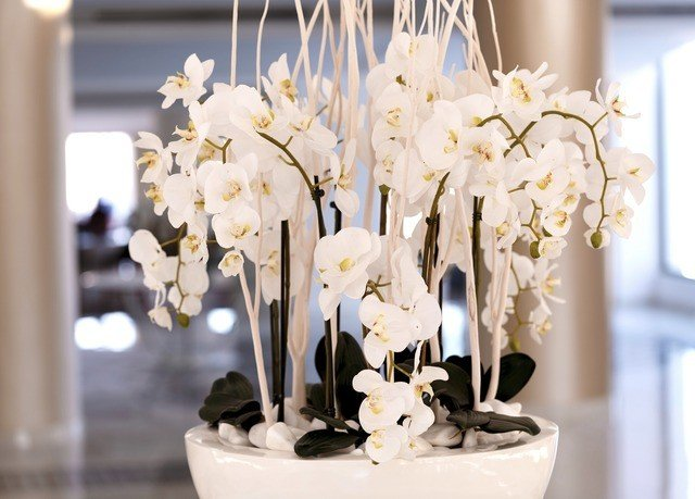 white flower centrepiece bouquet plant flower arranging floristry spring ceremony wedding cake lighting floral design wedding flower bouquet