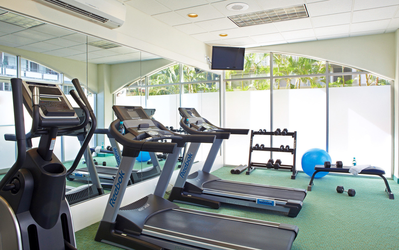 Boutique Budget Fitness structure gym sport venue office exercise machine physical fitness