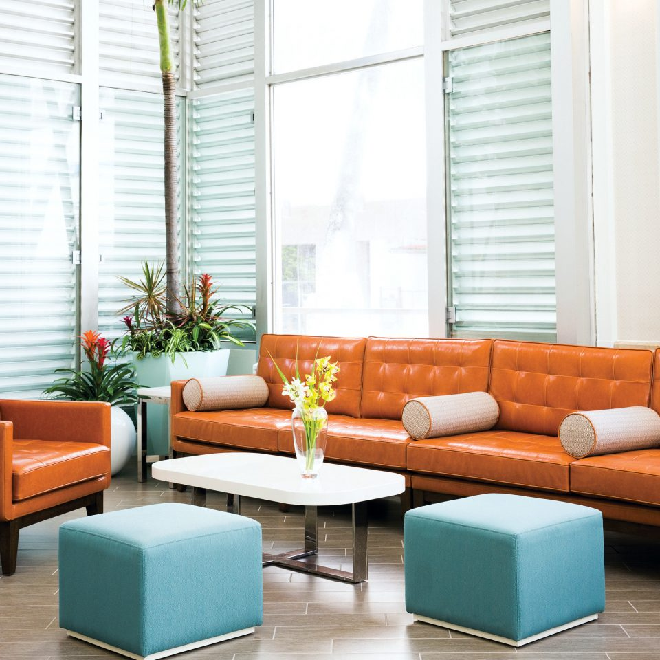 Boutique Budget Lobby Modern living room waiting room orange sofa leather arranged