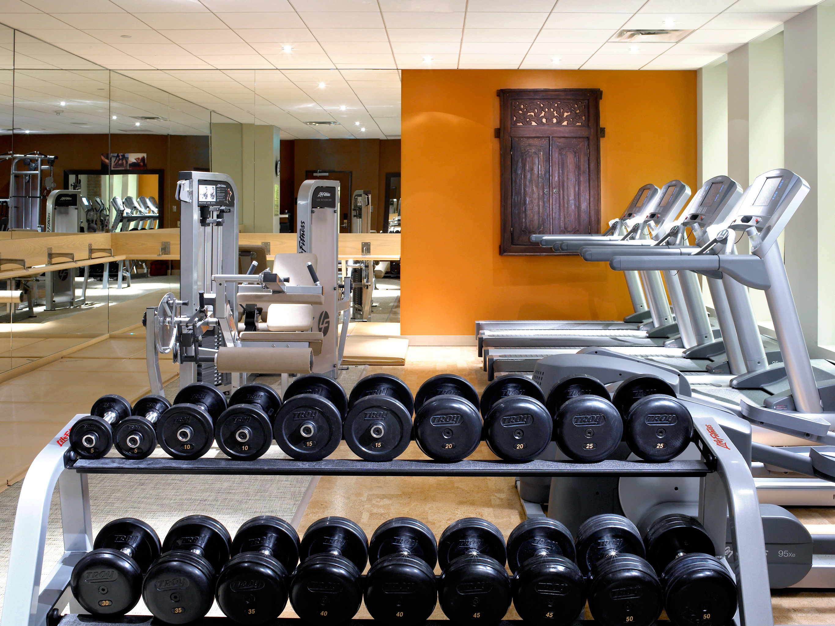 Boutique City Hip Wellness structure gym sport venue
