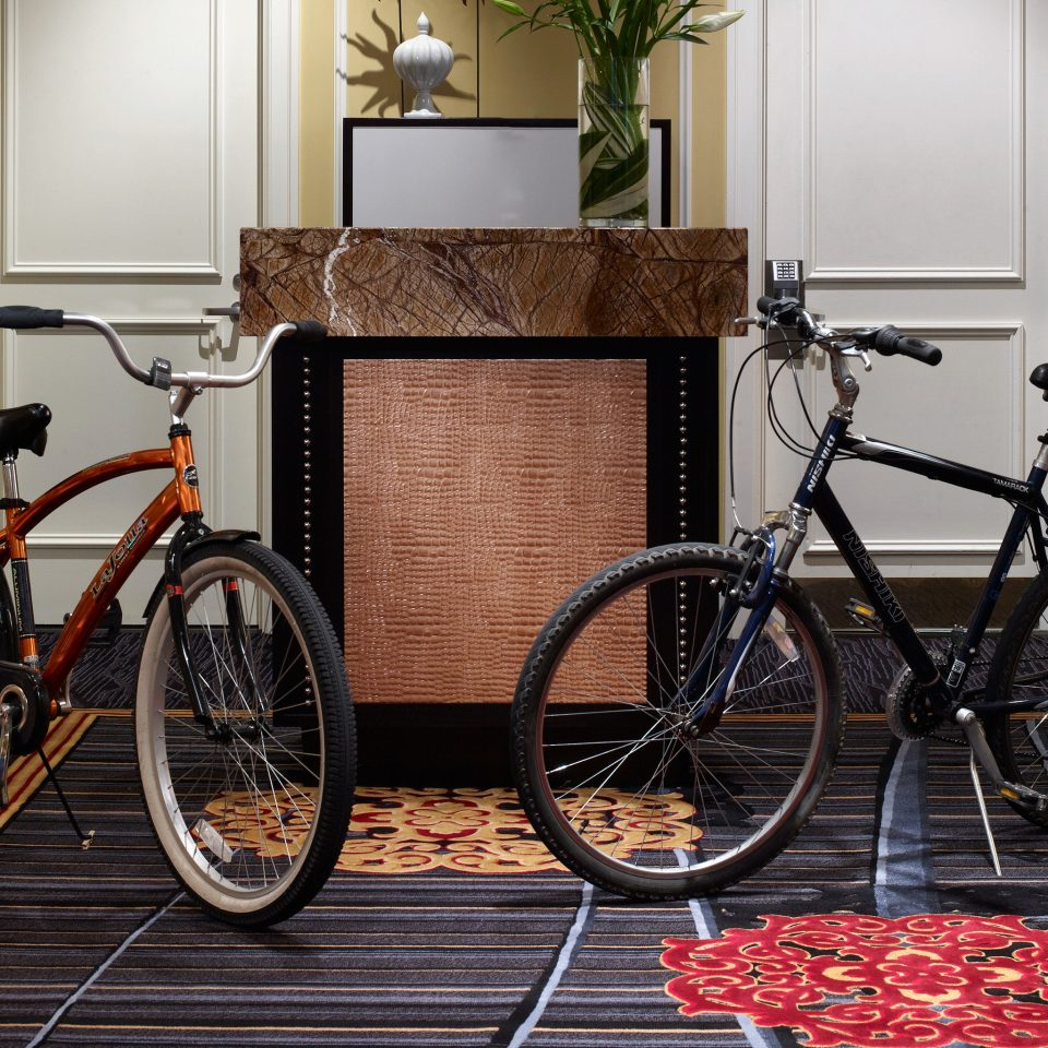Boutique City Lobby Modern Outdoor Activities bicycle road bicycle basket vehicle land vehicle parked wheel rack sports equipment