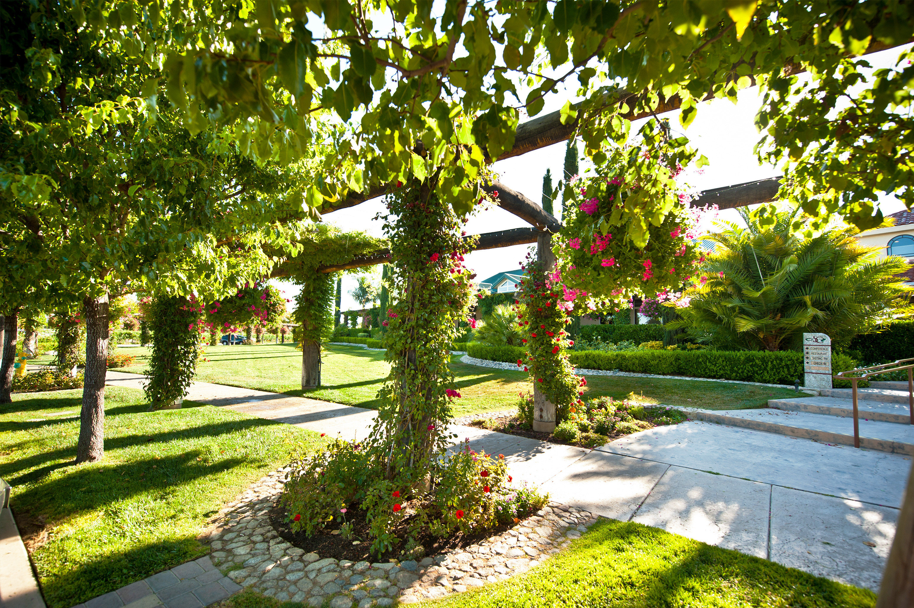 Boutique Country Grounds Romantic Winery tree grass Garden botany plant flower yard woody plant park backyard landscape architect home botanical garden lawn shrub Courtyard autumn landscaping surrounded