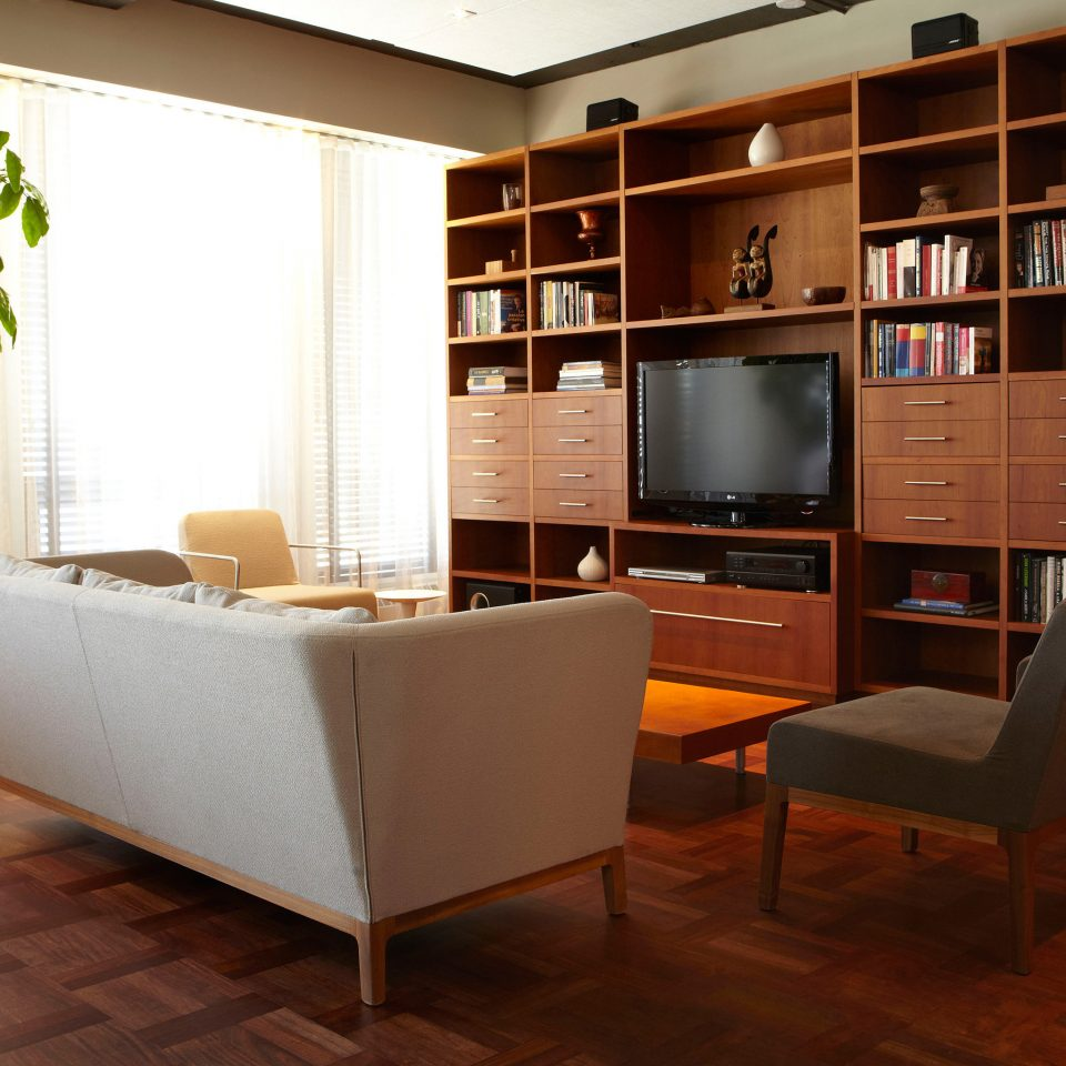 Boutique Entertainment Lounge Modern shelf living room office
