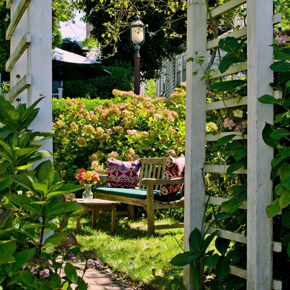 Boutique Grounds Inn Waterfront tree grass Garden flower flora botany yard backyard outdoor structure greenhouse botanical garden porch shrub cottage lush