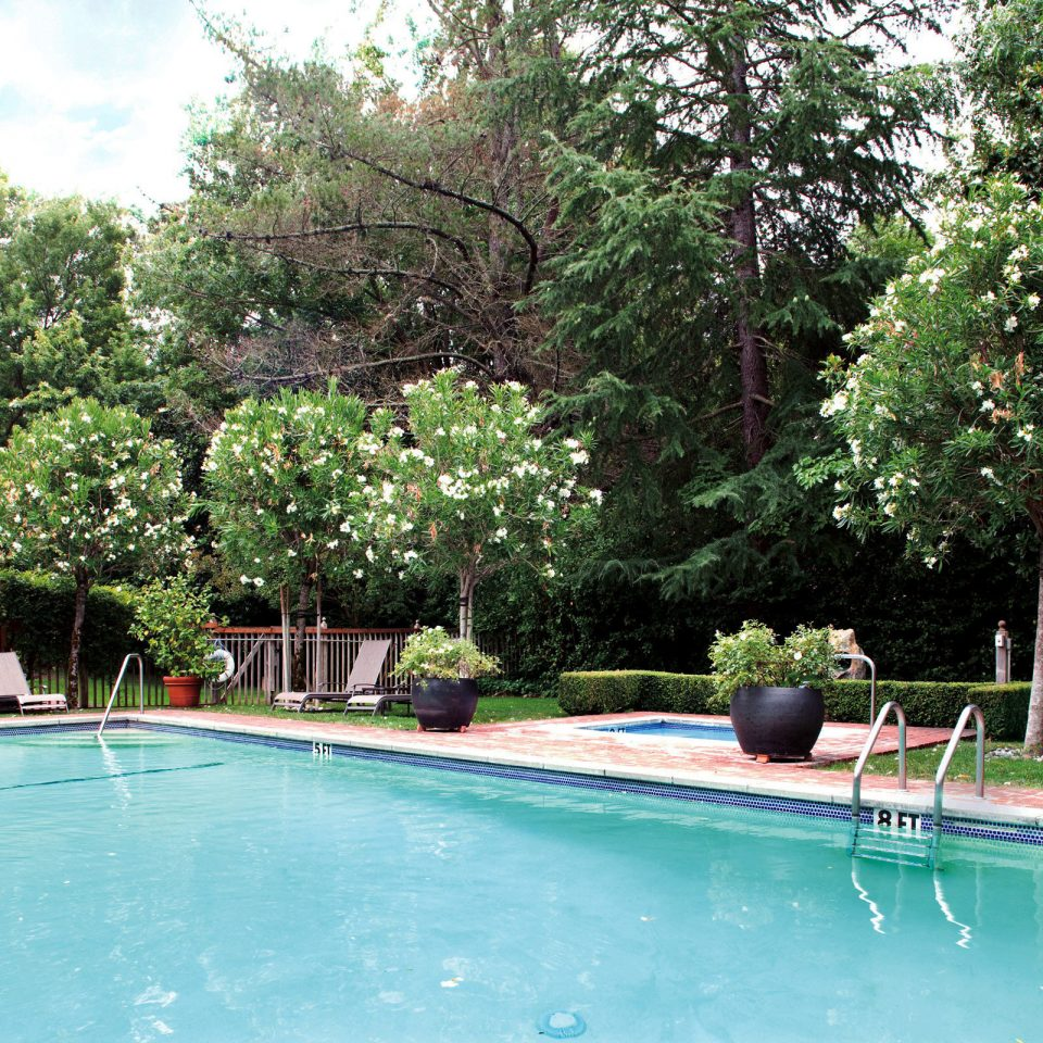 Boutique Inn Pool Romance tree swimming pool property leisure Sport backyard Resort Villa Garden swimming