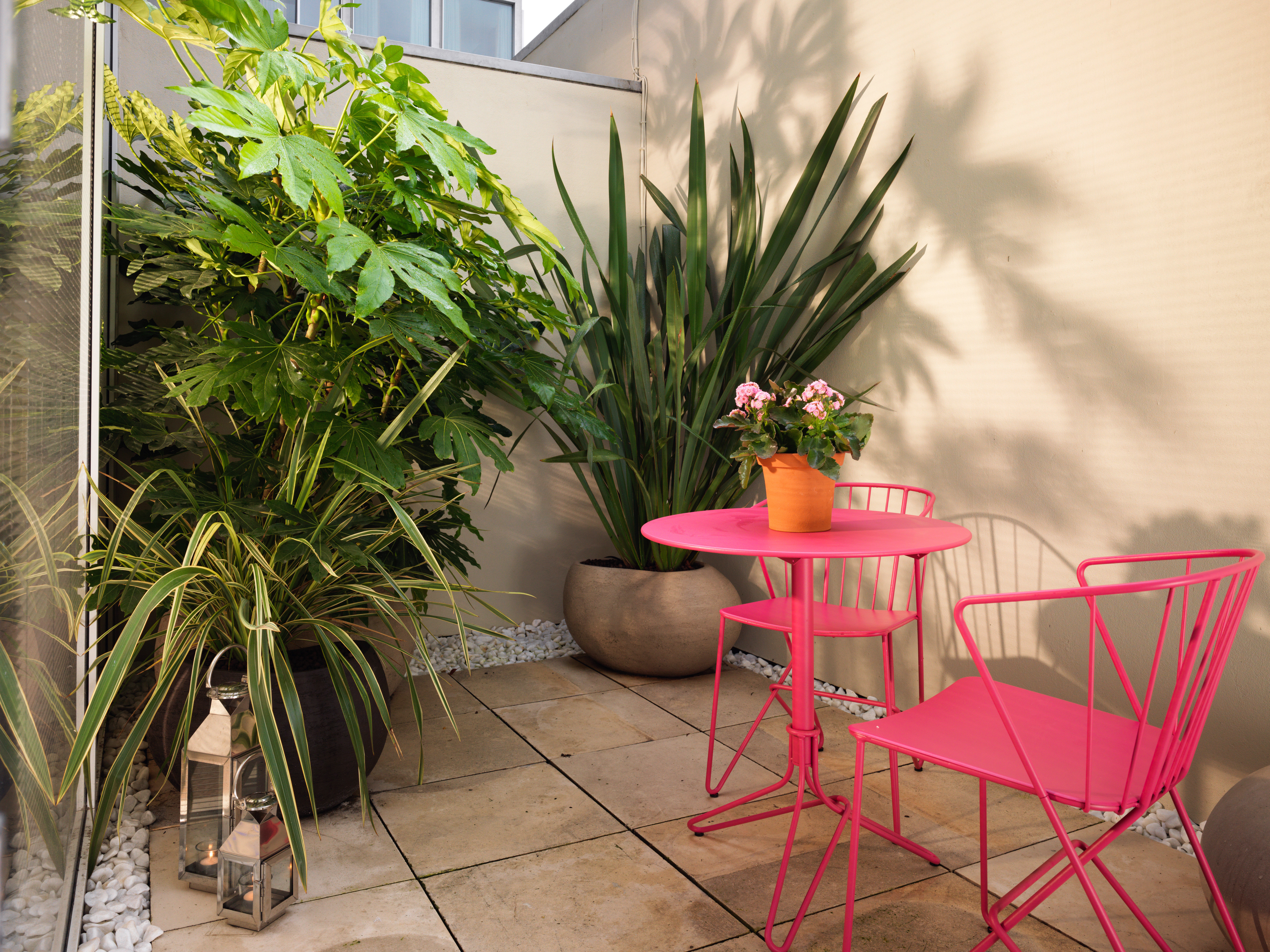 Boutique Lounge Patio plant property home backyard Garden dining table
