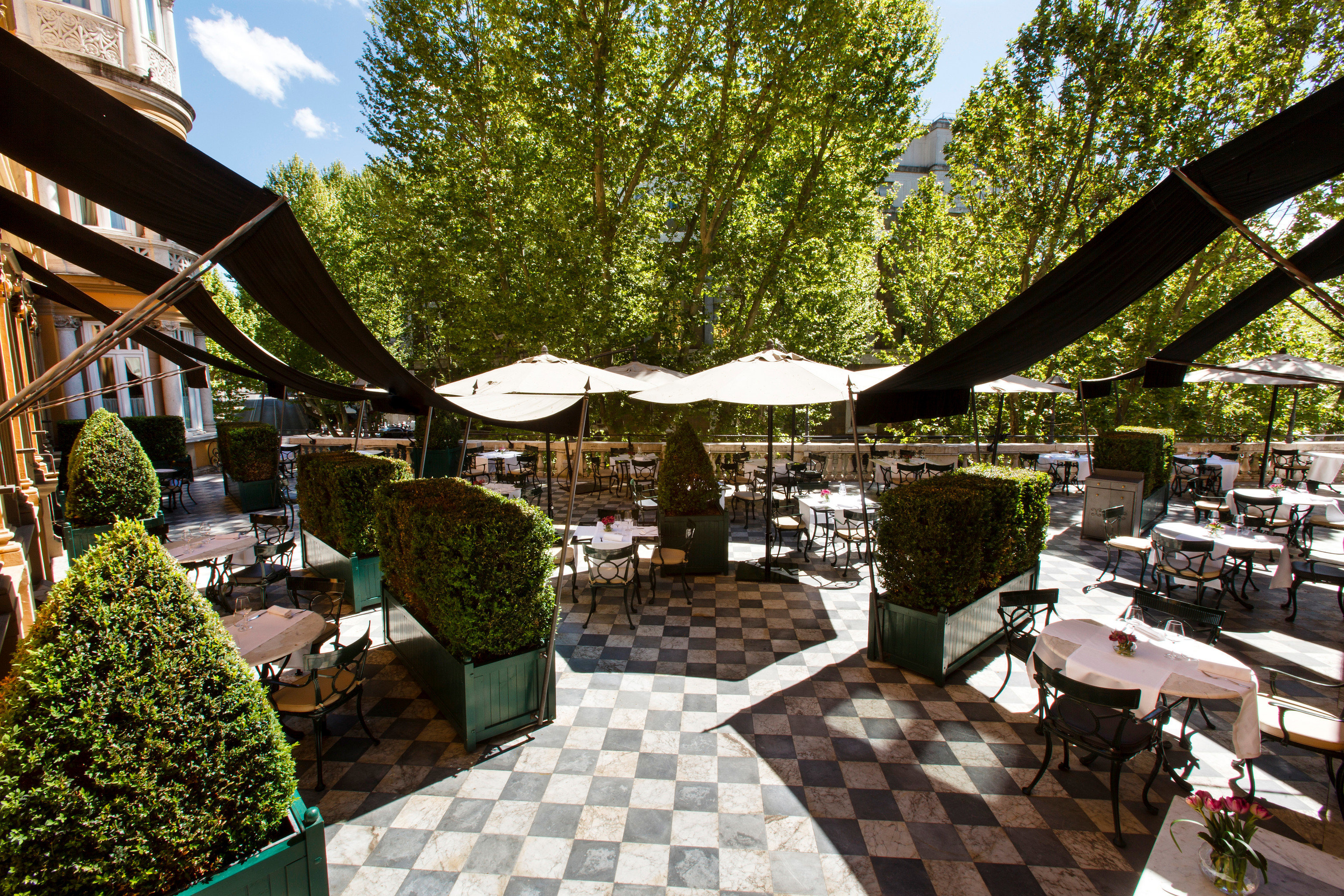 Boutique Hotels Hotels Italy Luxury Travel Romantic Hotels Rome tree public space Resort flower restaurant outdoor structure