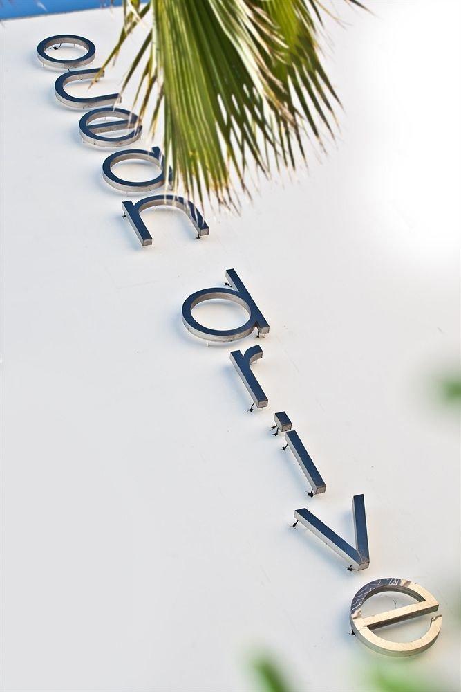 branch fashion accessory plant jewellery
