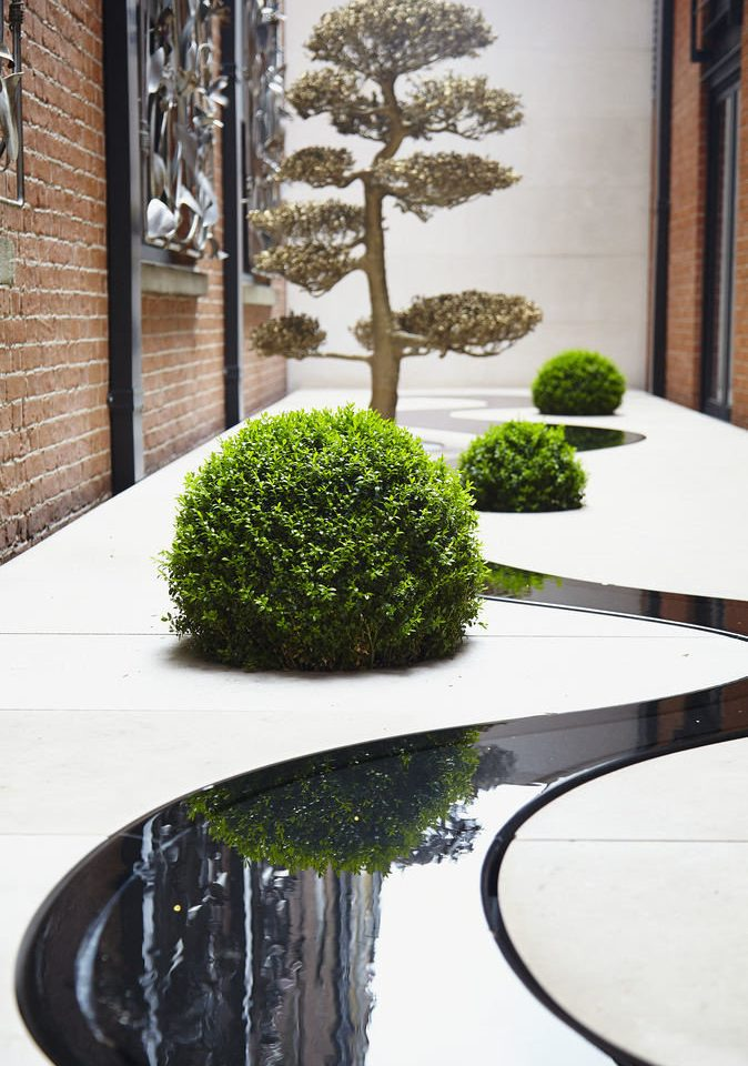 tree plant landscape architect flooring branch houseplant flowerpot