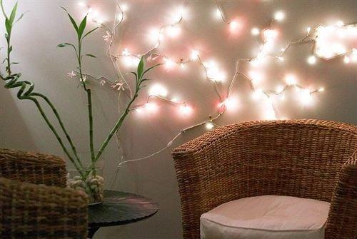 man made object lighting flower branch
