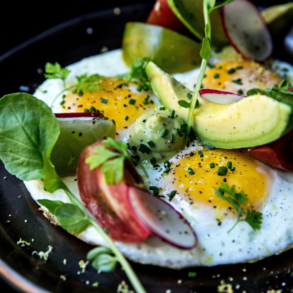 food plate salad land plant vegetable cuisine breakfast flowering plant