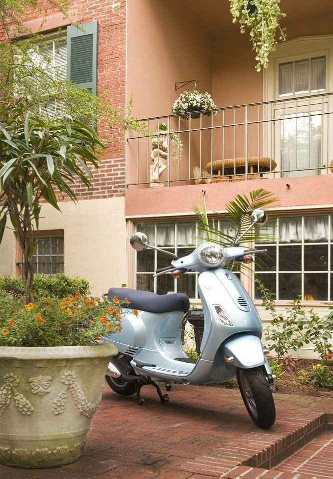 ground parked scooter plant vespa brick stone motorcycle curb
