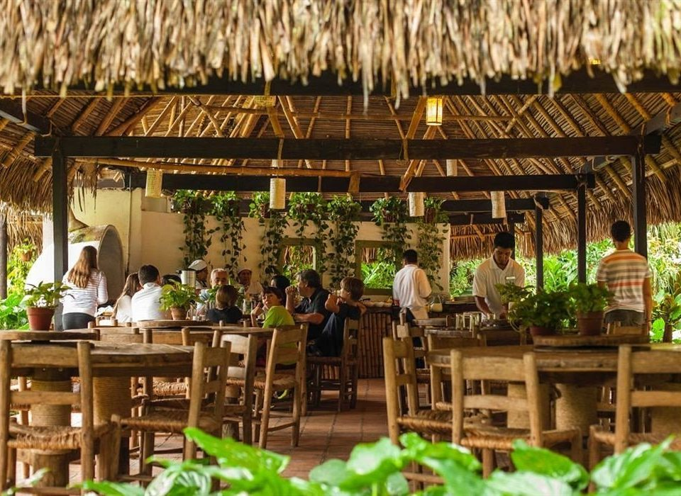 Budget Dining Drink Eat Eco Tropical Resort restaurant floristry plant outdoor structure