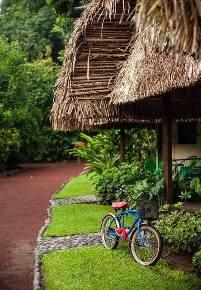 Budget Eco Grounds Nature Outdoor Activities Outdoors Tropical tree grass bicycle parked rural area hut Village Jungle flower Resort roof