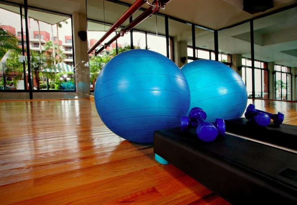 Budget Modern Waterfront structure sport venue ball physical fitness gym blue sports equipment boxing ring swiss ball bowling
