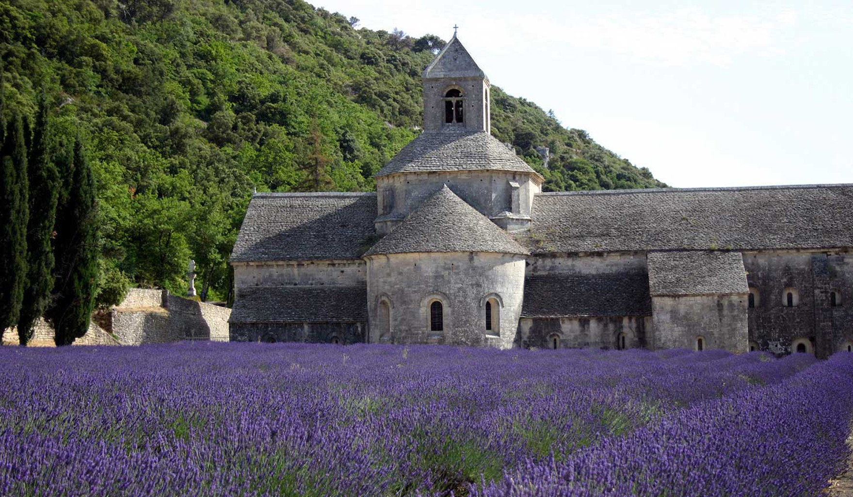 grass building stone flower plant rural area castle monastery chapel old