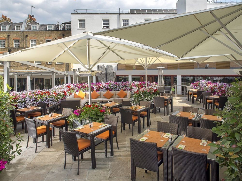 building chair floristry restaurant outdoor structure plaza
