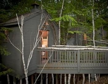 tree building outdoor structure cottage shed