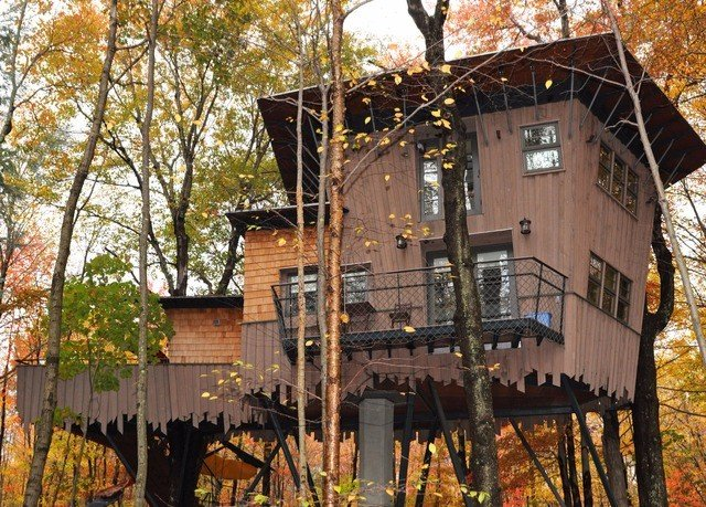 tree building house tree house home outdoor structure