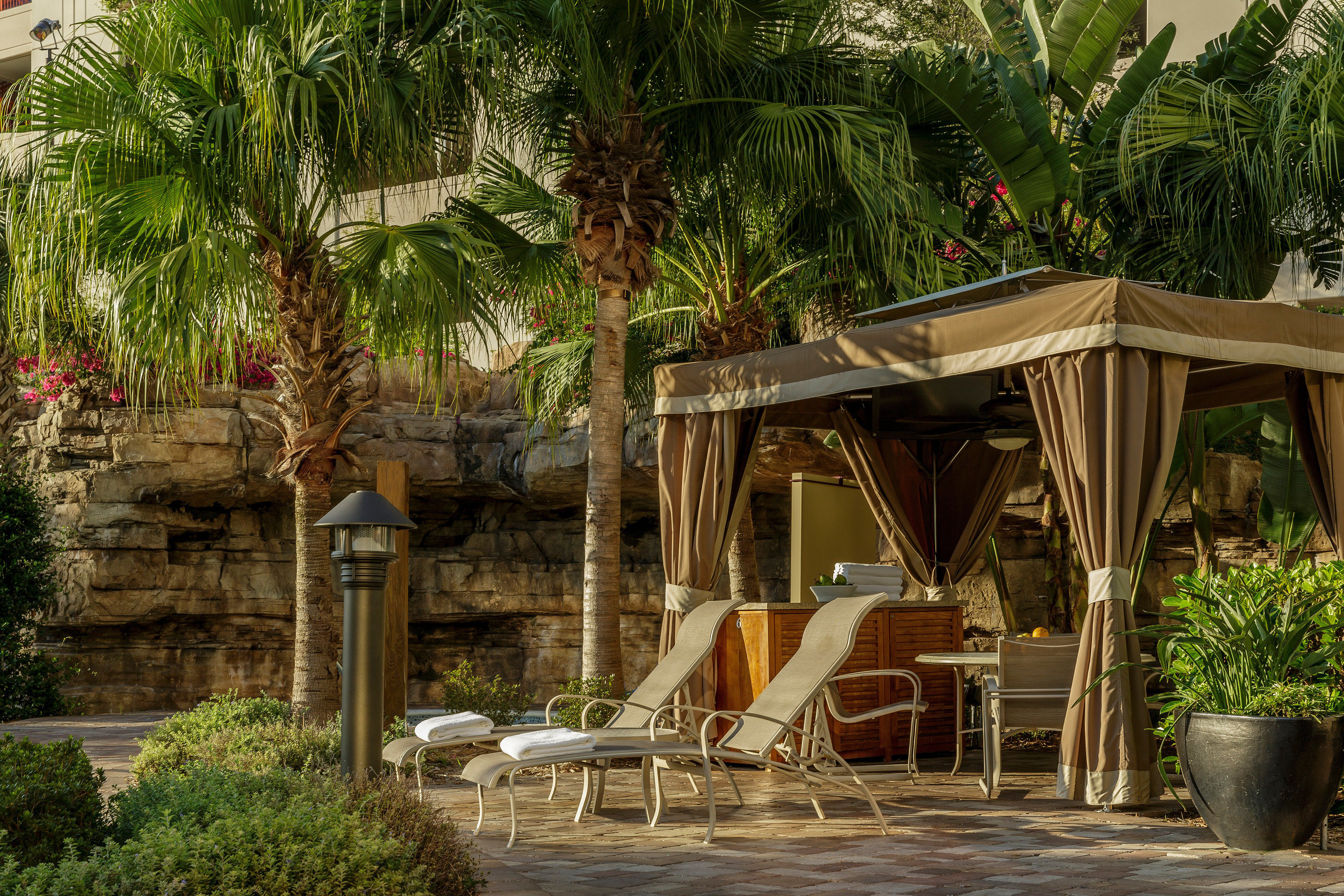 Buildings City Exterior Lounge Pool tree Resort building palm house arecales Jungle home backyard Garden restaurant Courtyard tropics outdoor structure plant