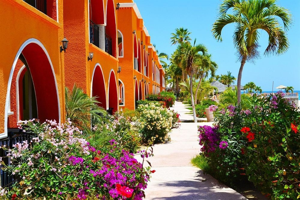 Buildings Exterior Grounds Tropical tree sky building plant flower Resort home Garden hacienda Courtyard palm Villa colorful