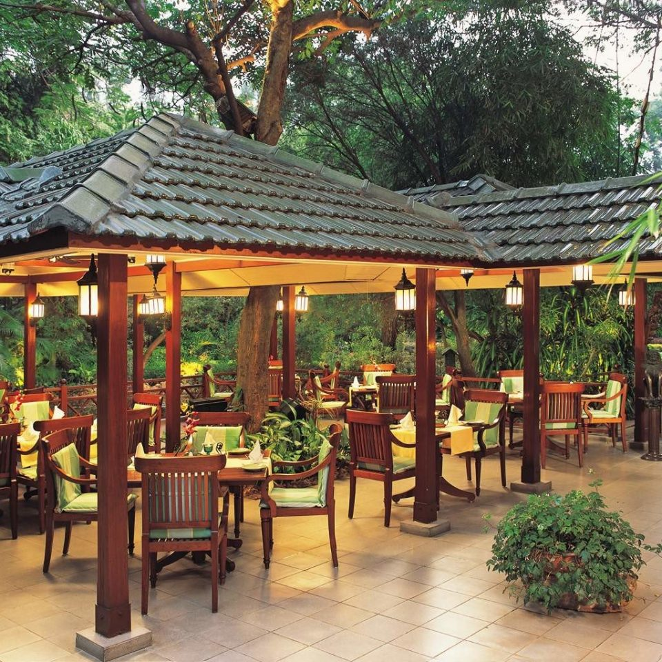 Business City Cultural Dining Elegant Luxury Shop tree ground chair building gazebo Resort outdoor structure eco hotel restaurant shinto shrine set