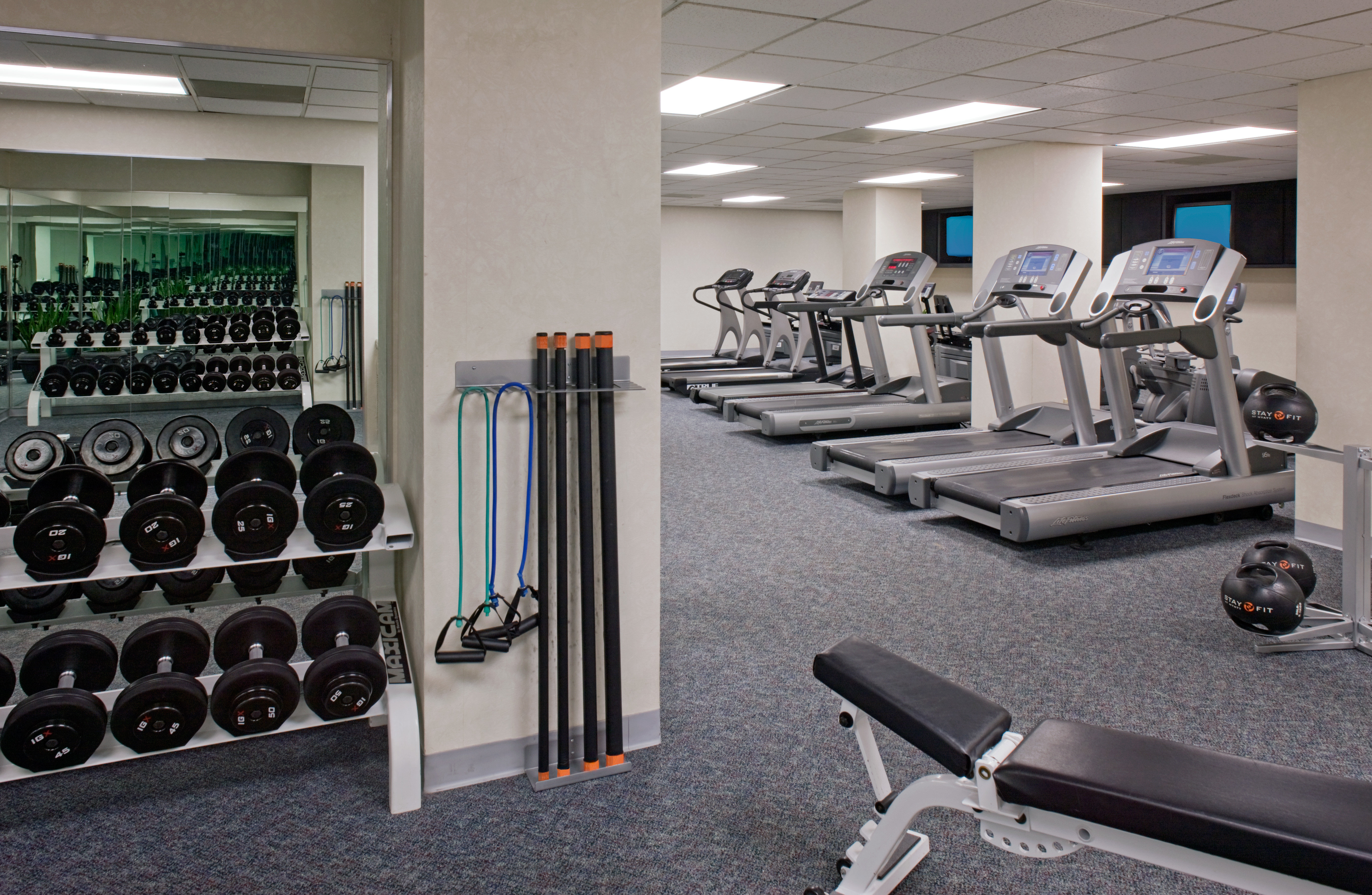 Business Classic Fitness Wellness structure gym sport venue muscle