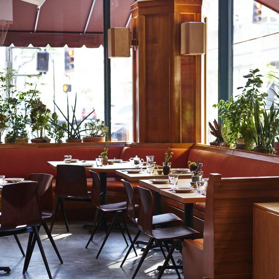 chair restaurant café coffeehouse