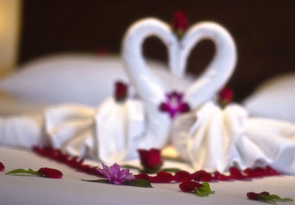 plate red pink food flower petal ceremony valentine's day cake icing dessert sweetness