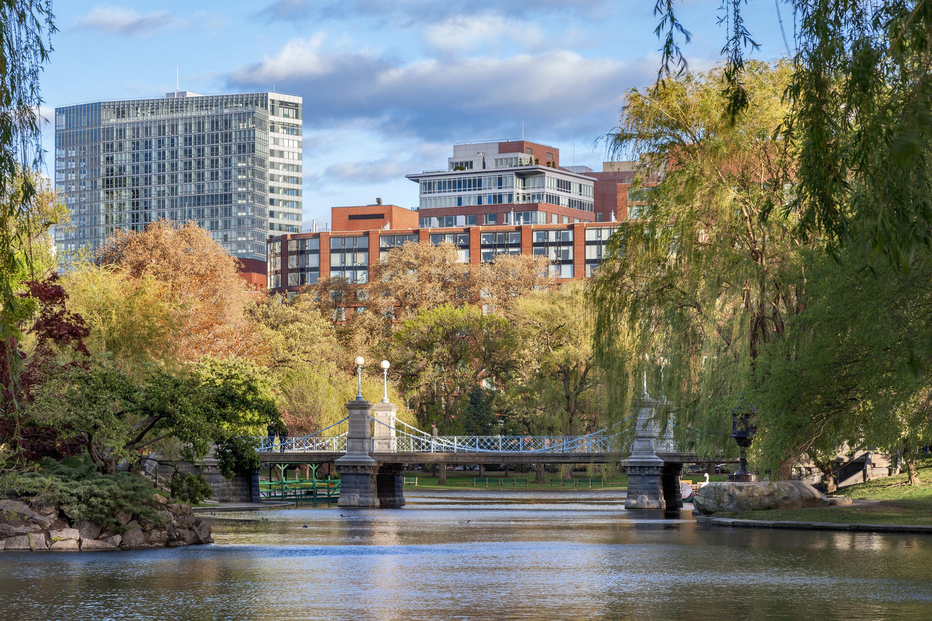Luxury Travel Trip Ideas tree water River City cityscape waterway Canal skyline Lake Downtown bridge traveling