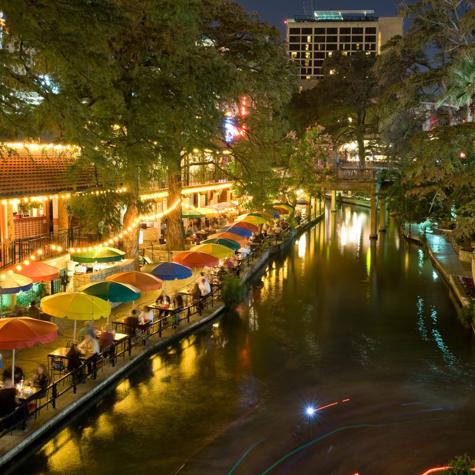 tree night City Town waterway cityscape Canal Downtown Resort evening colorful lined