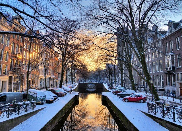 tree snow Winter Canal weather waterway season neighbourhood cityscape way Downtown autumn long traveling sidewalk lined railroad
