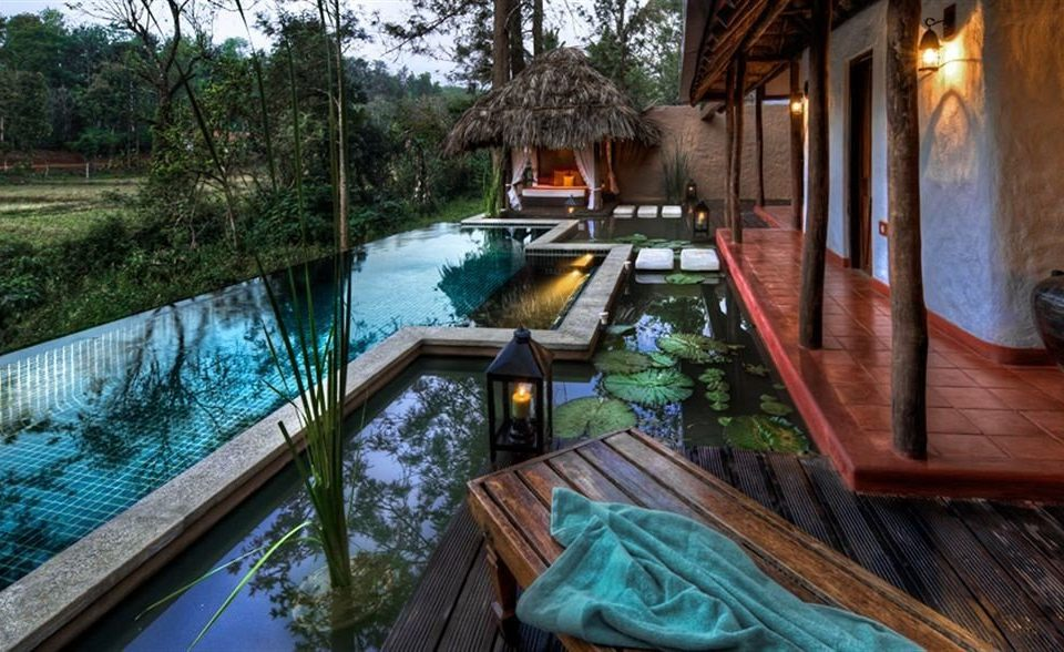 tree swimming pool waterway Canal backyard Resort