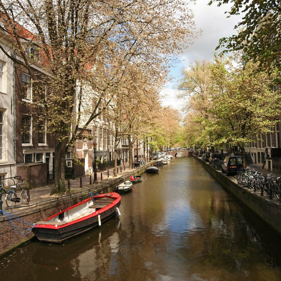 tree building Canal water River waterway transport neighbourhood house narrow flower cityscape way lined sidewalk traveling