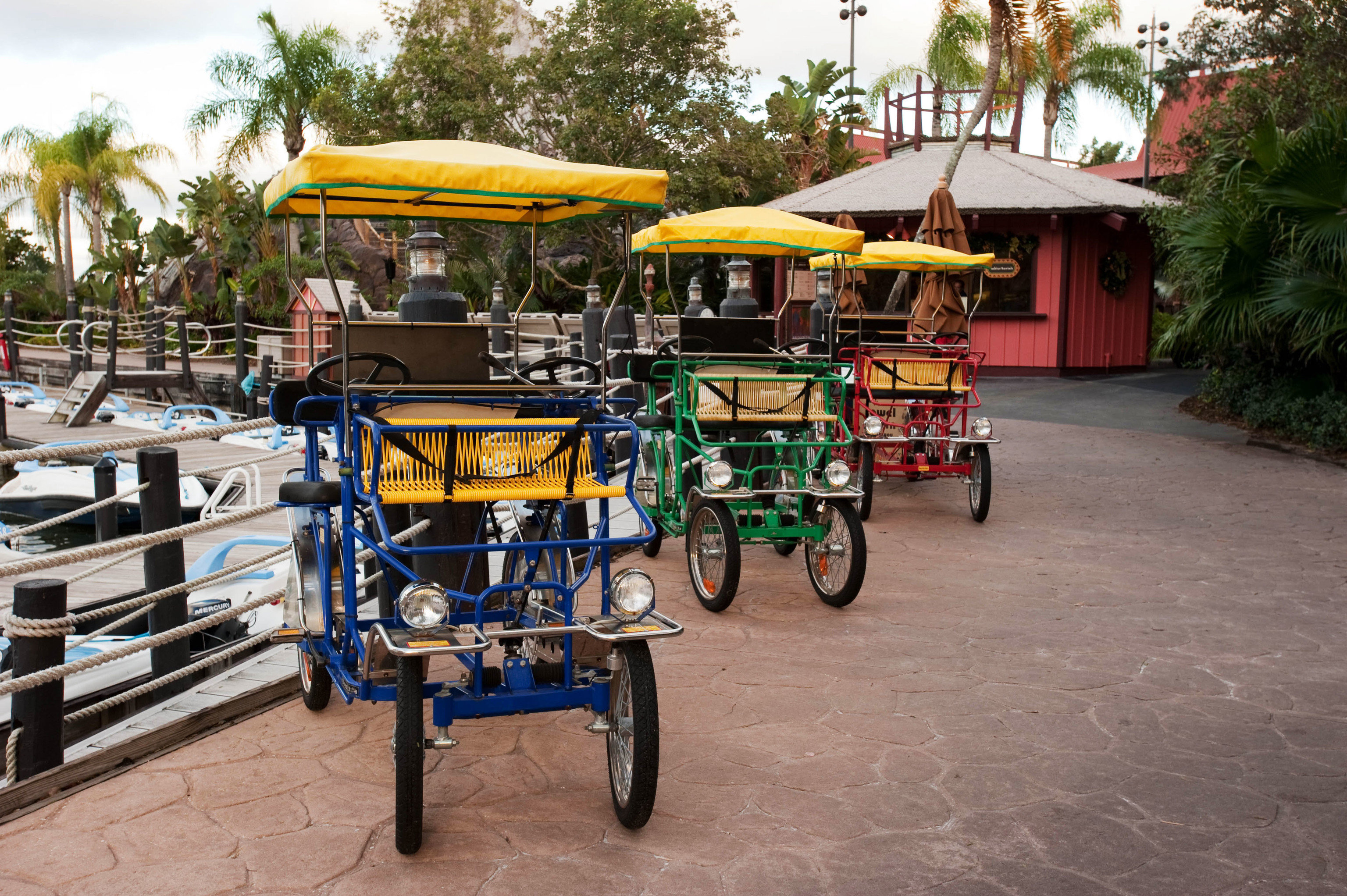 tree ground vehicle cart public space pulling carriage drawn food