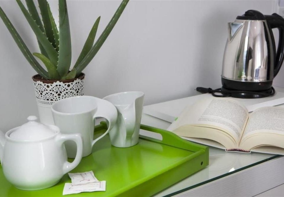 green plant ceramic cluttered dining table