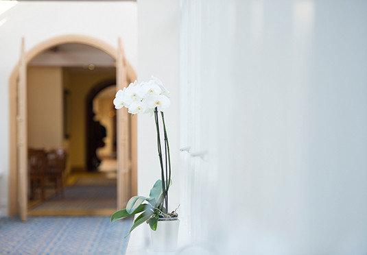 flower green ceremony wedding white plant
