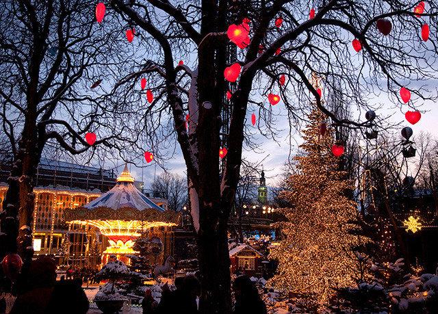 tree light traffic season evening Christmas autumn christmas decoration christmas lights shrine holiday flower