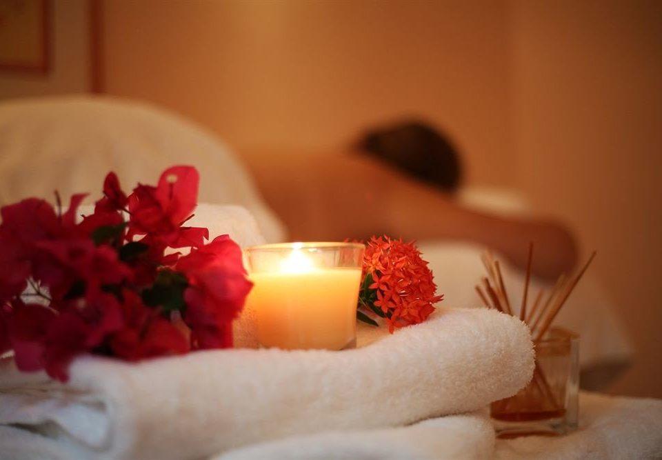 red flower petal christmas decoration lighting candle hand Christmas sweetness macro photography