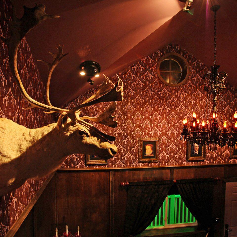Christmas christmas decoration night christmas lights lighting screenshot holiday