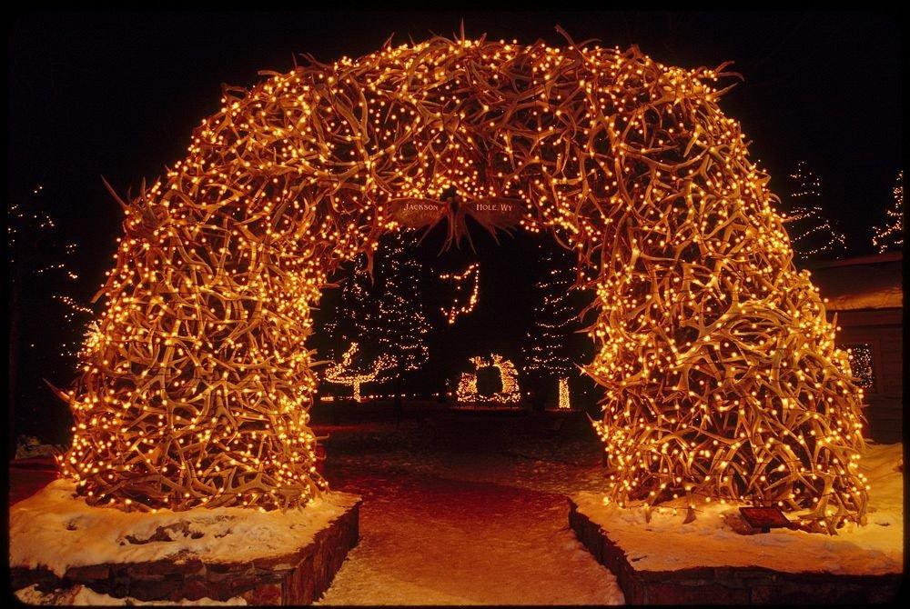 tree christmas decoration night christmas lights Christmas Christmas tree holiday