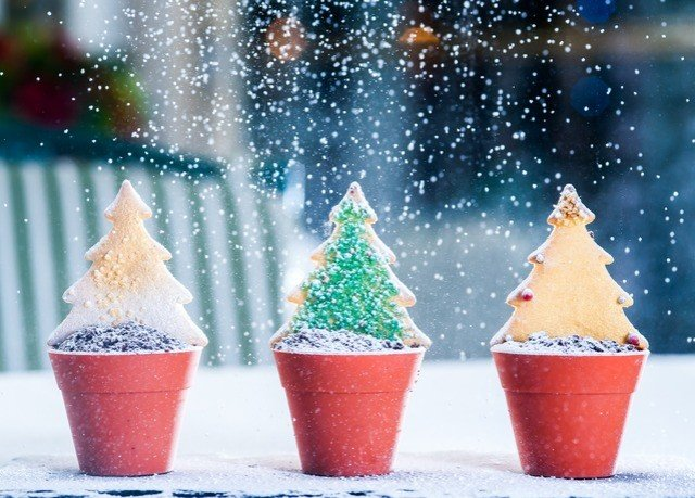Christmas tree christmas decoration food Christmas dessert orange
