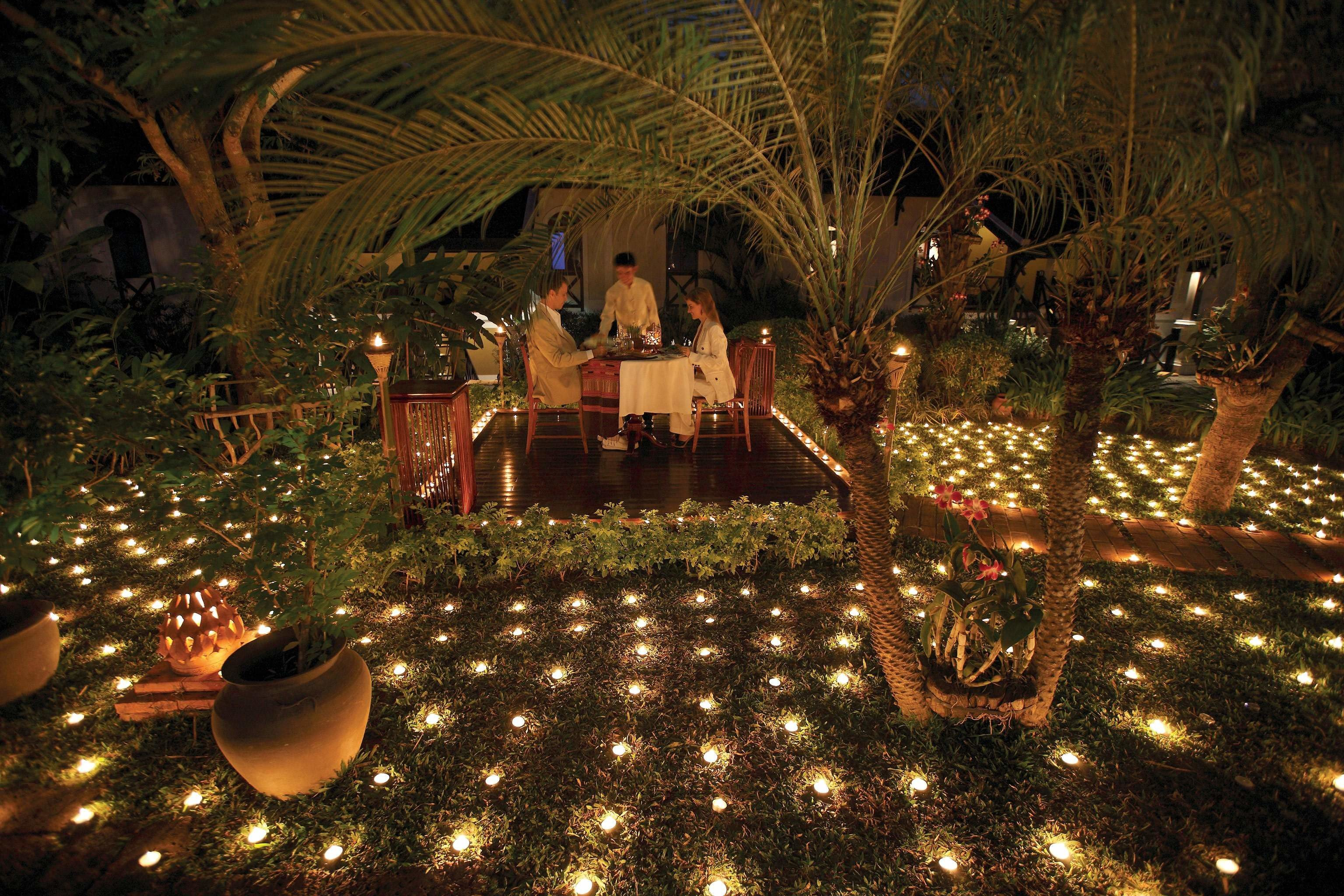Garden Grounds Nightlife Romantic Christmas christmas decoration christmas lights lit screenshot light landscape lighting night