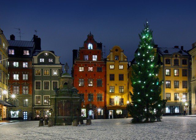 building landmark Town City night evening Downtown cityscape plaza Christmas tree town square