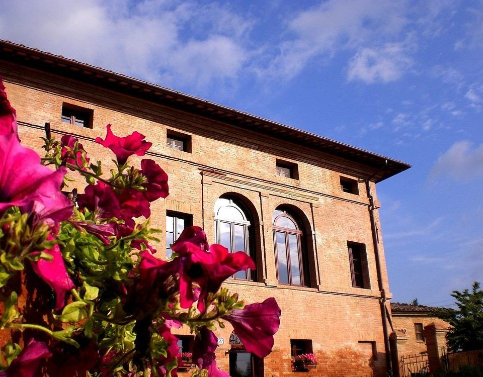 sky building flower Town house pink brick Village place of worship Church travel
