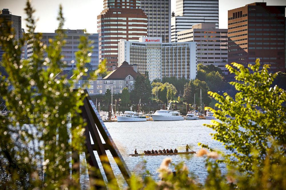 tree water City residential area season flower autumn sunlight cityscape